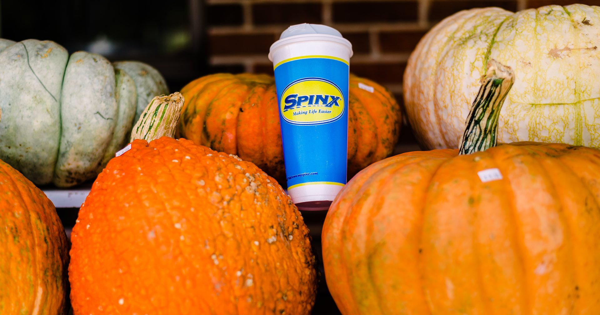 It's Pumpkin Spice Season, Y'all!